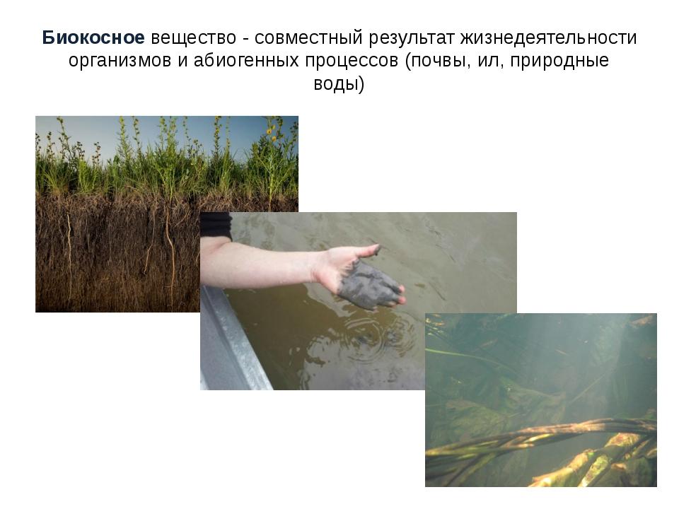 Биокосное вещество - совместный результат жизнедеятельности организмов и абио...