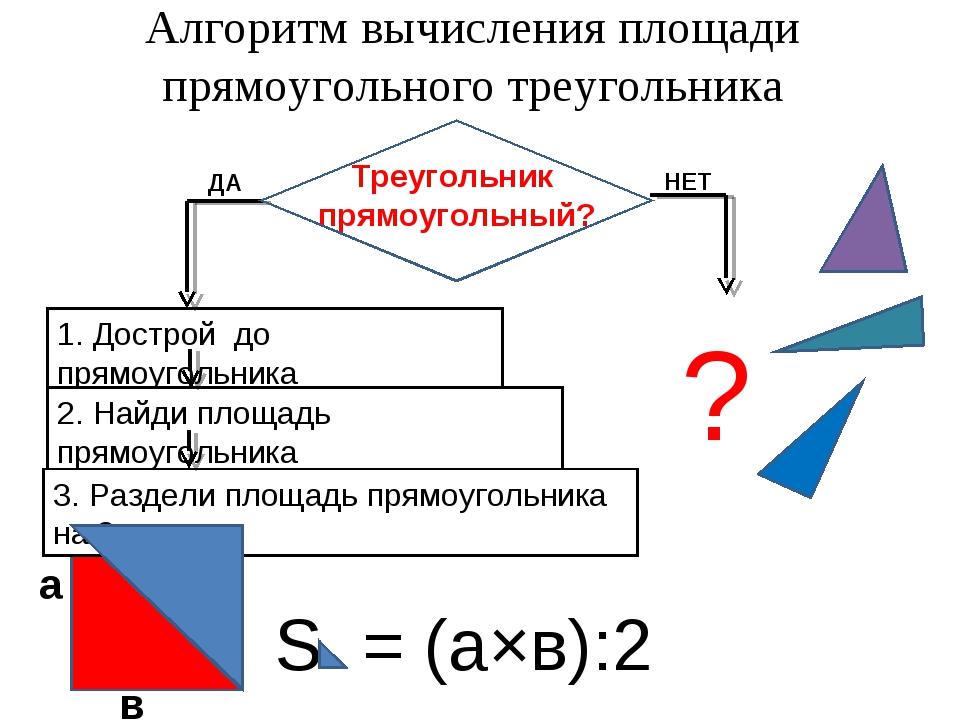 Алгоритм вычисления площади прямоугольного треугольника в