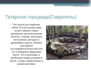 Татарское городище(Ставрополь) Это музей под открытым небом. В ходе путешеств