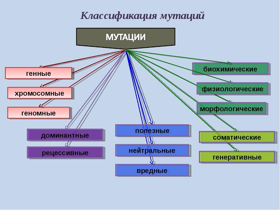 Классификация мутаций геномные вредные биохимические рецессивные генные хромо...