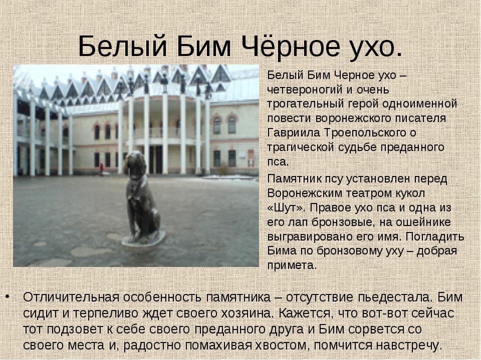 Белый Бим Чёрное ухо. Отличительная особенность памятника – отсутствие пьедес...