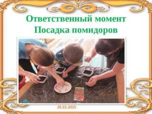 Ответственный момент Посадка помидоров 26.01.2015