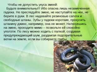 Чтобы не допустить укуса змеей: Будьте внимательны!!! Ибо опасна лишь незаме