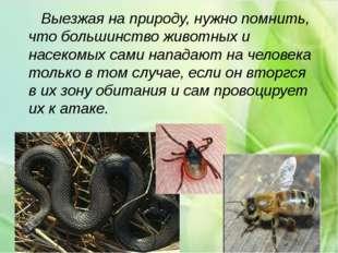 Выезжая на природу, нужно помнить, что большинство животных и насекомых сами