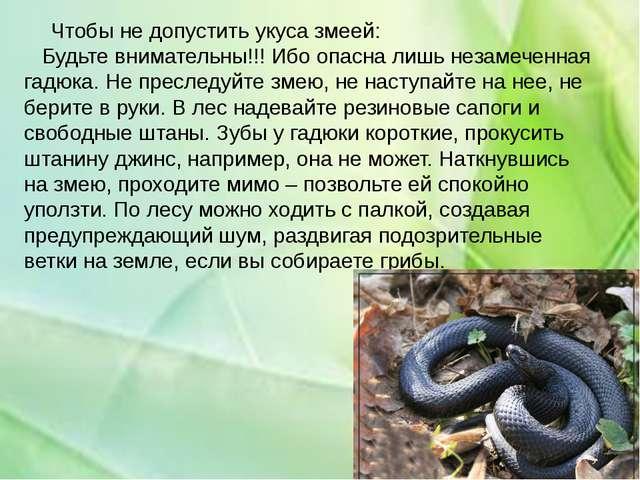 Чтобы не допустить укуса змеей: Будьте внимательны!!! Ибо опасна лишь незаме...
