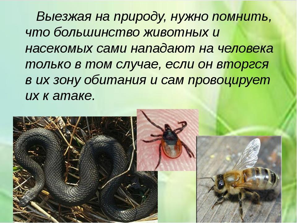 Выезжая на природу, нужно помнить, что большинство животных и насекомых сами...