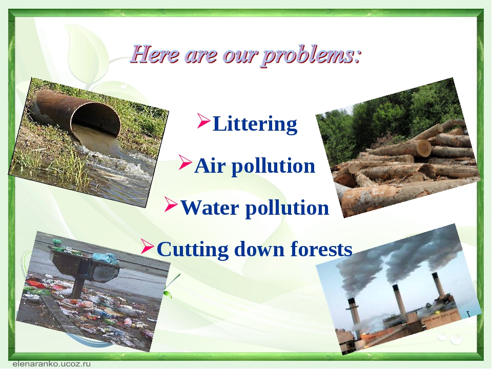 Littering Air pollution Water pollution Cutting down forests
