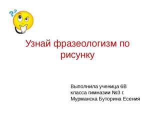 Узнай фразеологизм по рисунку Выполнила ученица 6В класса гимназии №3 г. Мурм