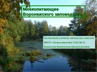 Млекопитающие Воронежского заповедника Выполнила учитель начальных классов МК