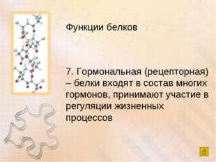 Функции белков 7. Гормональная (рецепторная) – белки входят в состав многих г