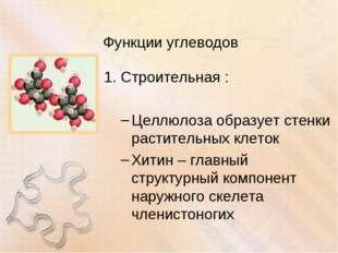 Функции углеводов Строительная : Целлюлоза образует стенки растительных клето