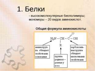 1. Белки - высокомолекулярные биополимеры; мономеры – 20 видов аминокислот. О
