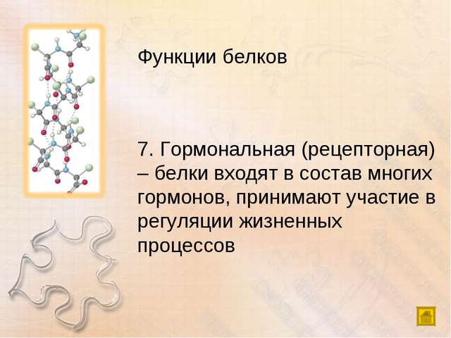 Функции белков 7. Гормональная (рецепторная) – белки входят в состав многих г...