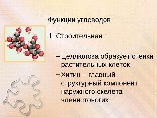 Функции углеводов Строительная : Целлюлоза образует стенки растительных клето...