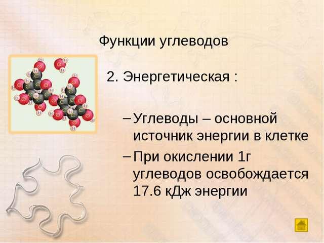 Функции углеводов 2. Энергетическая : Углеводы – основной источник энергии в...