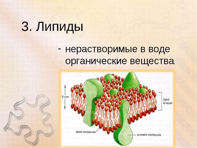 3. Липиды нерастворимые в воде органические вещества.