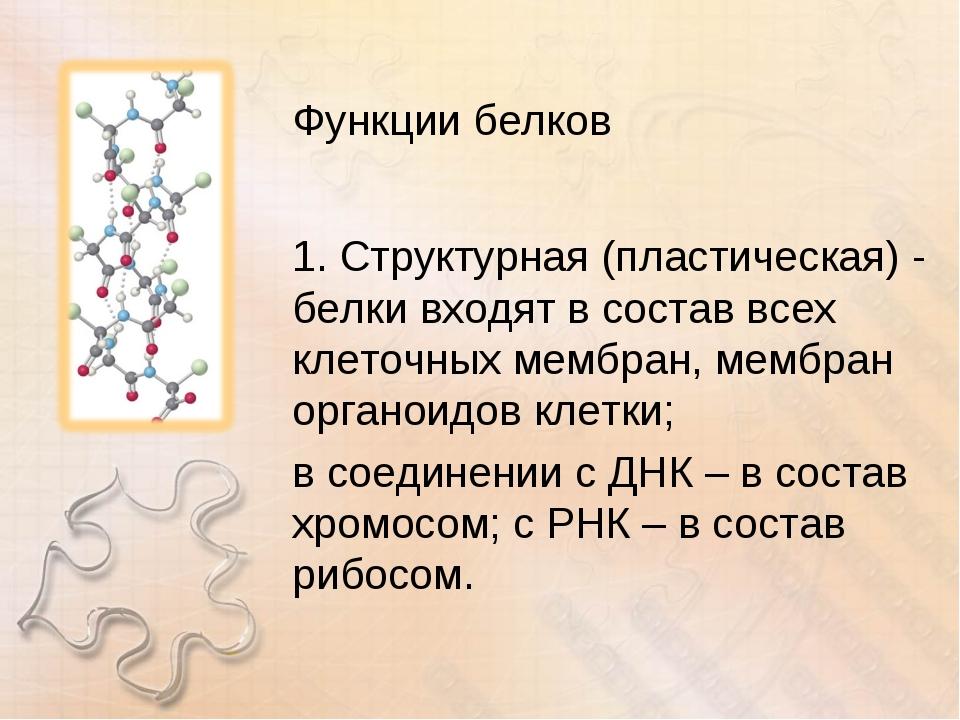 Функции белков 1. Структурная (пластическая) - белки входят в состав всех кле...