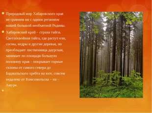 Природный мир Хабаровского края не сравним ни с одним регионом нашей большой