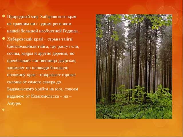 Природный мир Хабаровского края не сравним ни с одним регионом нашей большой...