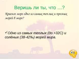 Веришь ли ты, что …? Красное море одно из самых теплых и пресных морей в мире