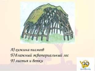 А) хижина пигмеев Б) влажный экваториальный лес В) листья и ветки