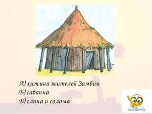 А) хижина жителей Замбии Б) саванна В) глина и солома