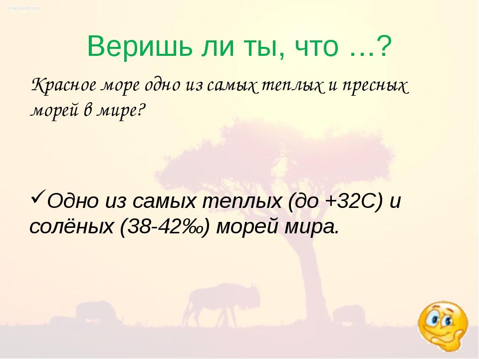 Веришь ли ты, что …? Красное море одно из самых теплых и пресных морей в мире...