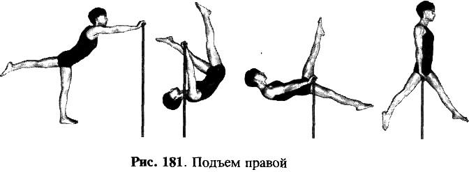 Гимнастика висы и упоры доклад 6329