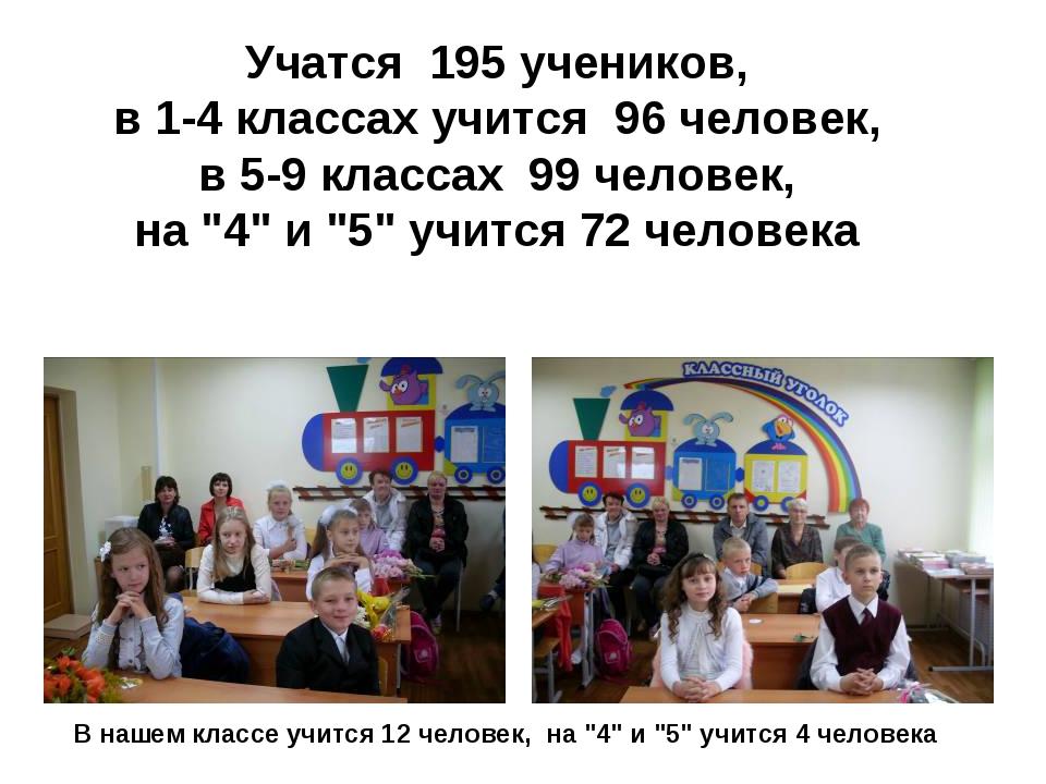 Учатся 195 учeникoв, в 1-4 классах учится 96 человек, в 5-9 классах 99 чело...