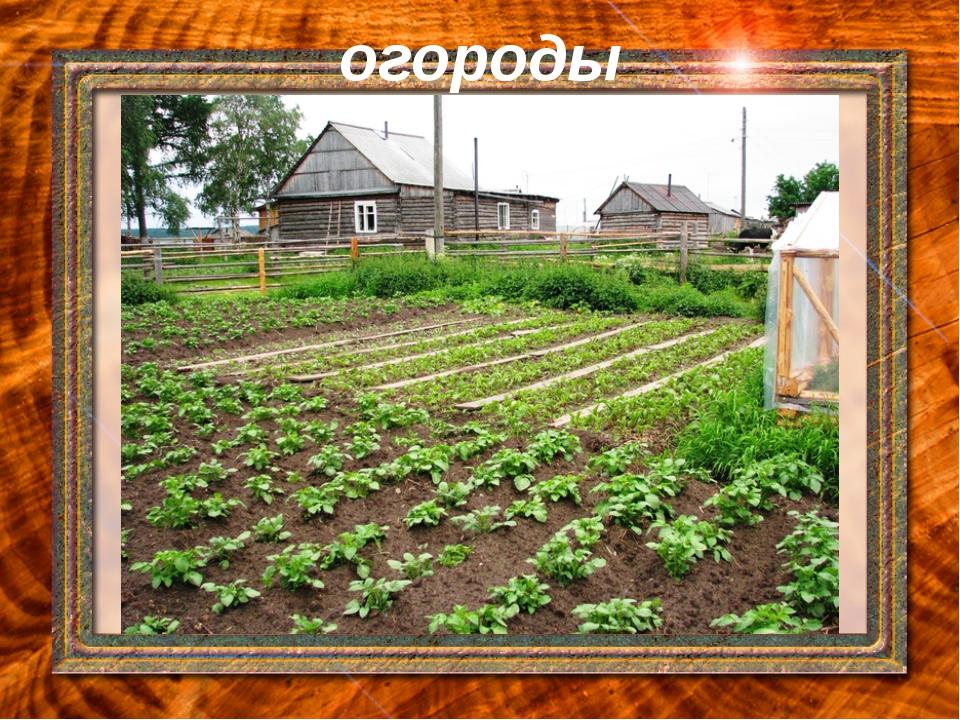 огороды