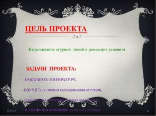ЦЕЛЬ ПРОЕКТА -Выращивание огурцов зимой в домашних условиях ЗАДАЧИ ПРОЕКТА: -