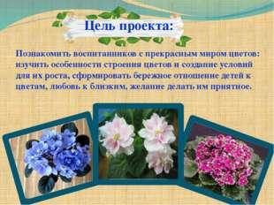 Цель проекта: Познакомить воспитанников с прекрасным миром цветов: изучить о