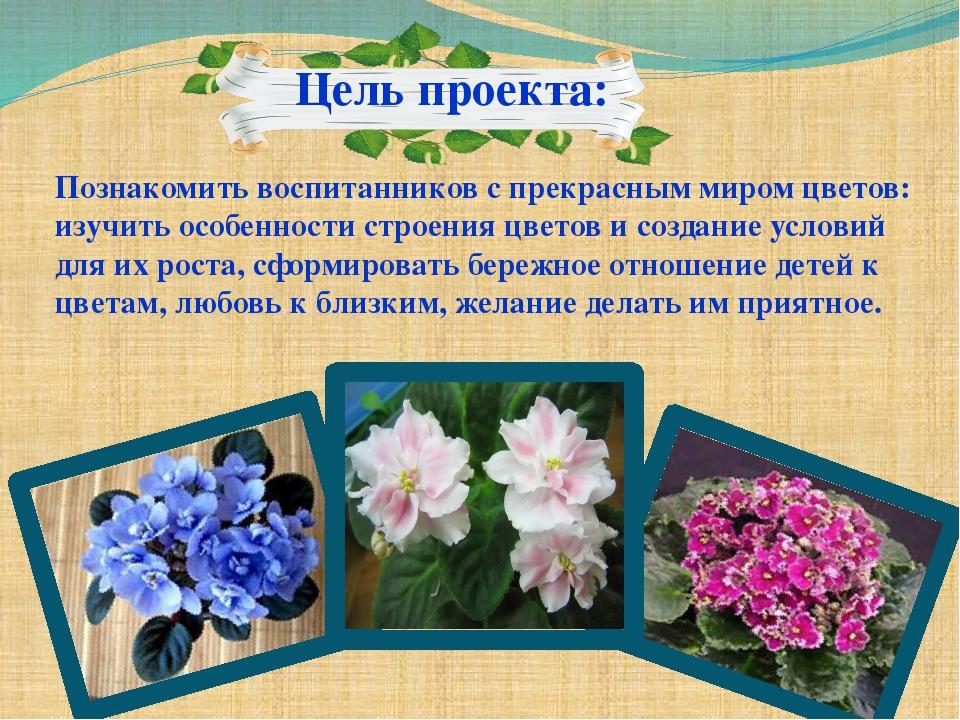 Цель проекта: Познакомить воспитанников с прекрасным миром цветов: изучить о...