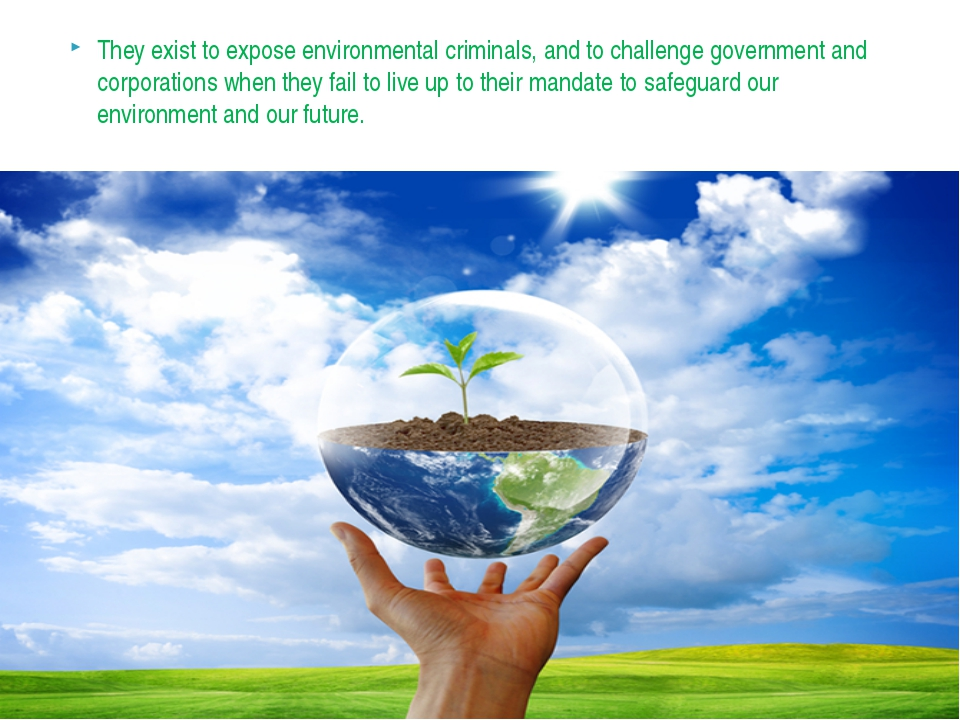 They exist to expose environmental criminals, and to challenge government and...