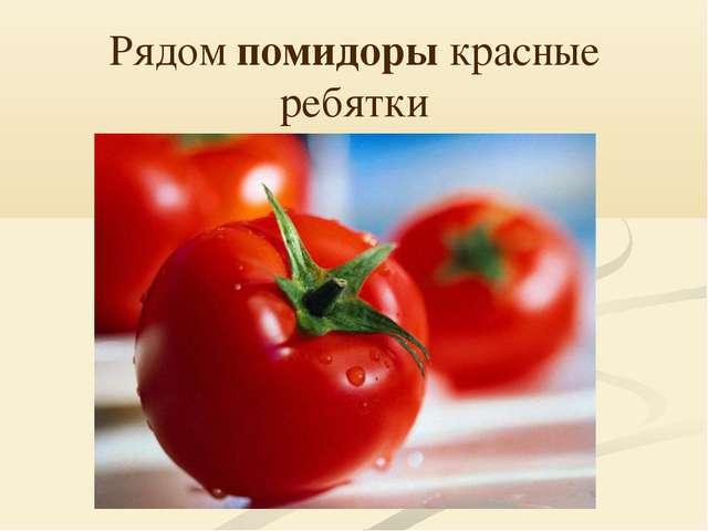 Рядом помидоры красные ребятки