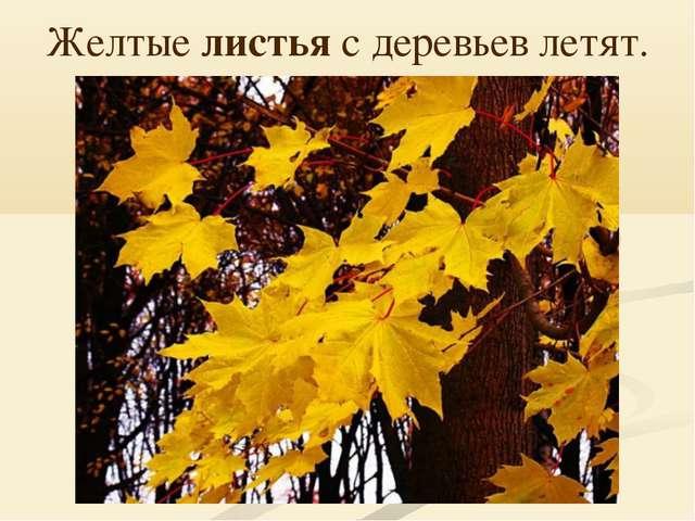 Желтые листья с деревьев летят.