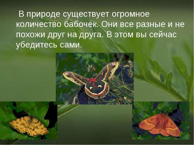 В природе существует огромное количество бабочек. Они все разные и не похожи...