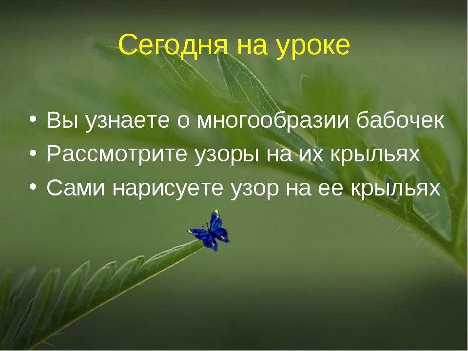 Сегодня на уроке Вы узнаете о многообразии бабочек Рассмотрите узоры на их кр...