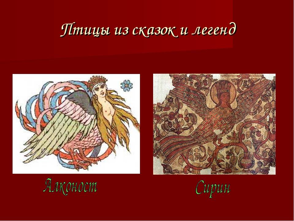 Птицы из сказок и легенд