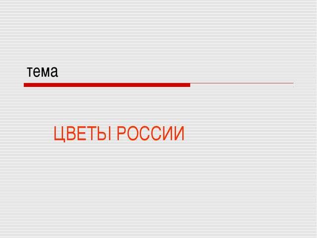 тема ЦВЕТЫ РОССИИ