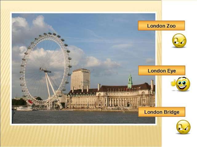 London Zoo London Bridge London Eye