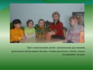 При ознакомлении детей с комнатными растениями, проводятся наблюдения, бесед
