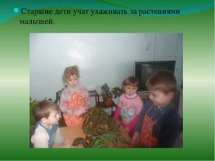 Старшие дети учат ухаживать за растениями малышей.