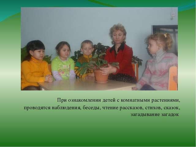 При ознакомлении детей с комнатными растениями, проводятся наблюдения, бесед...