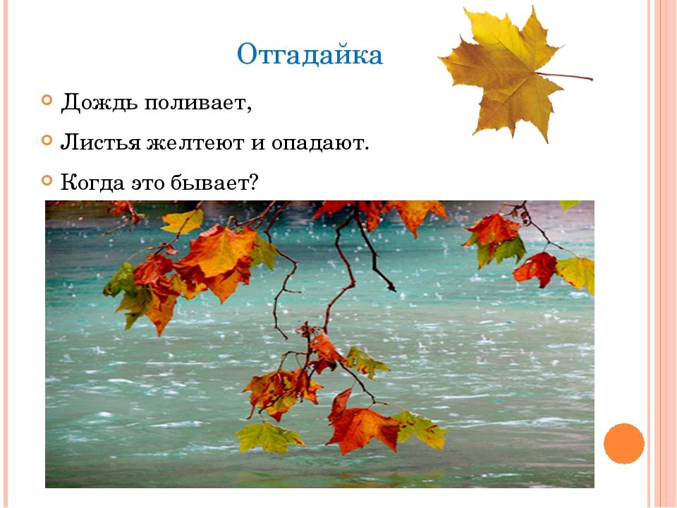 Отгадайка Дождь поливает, Листья желтеют и опадают. Когда это бывает?