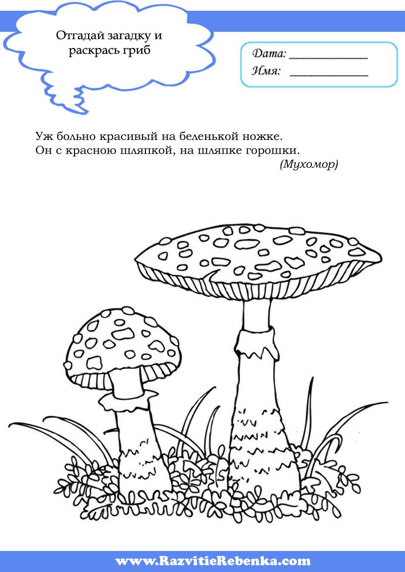 Ядовитые грибы для раскраски