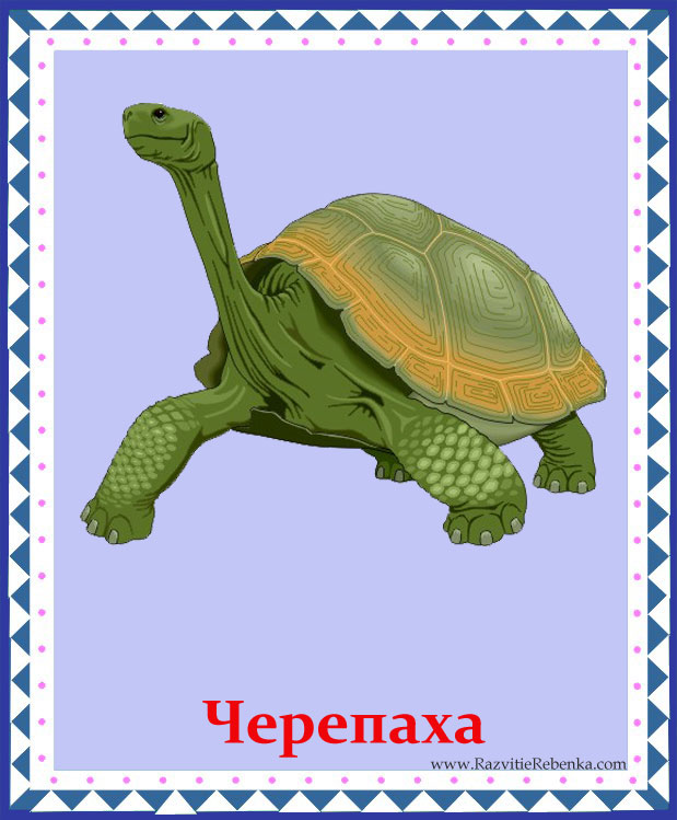 hello_html_6926ec85.jpg