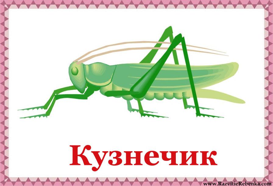 hello_html_157054fb.jpg