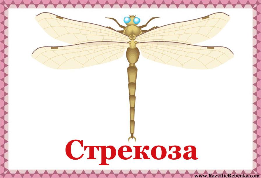 hello_html_m57f4239a.jpg