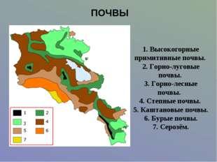 ПОЧВЫ 1. Высокогорные примитивные почвы. 2. Горно-луговые почвы. 3. Горно-лес